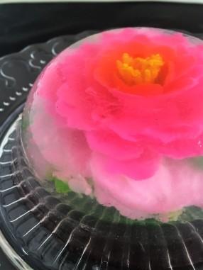 Gelatin Cake D